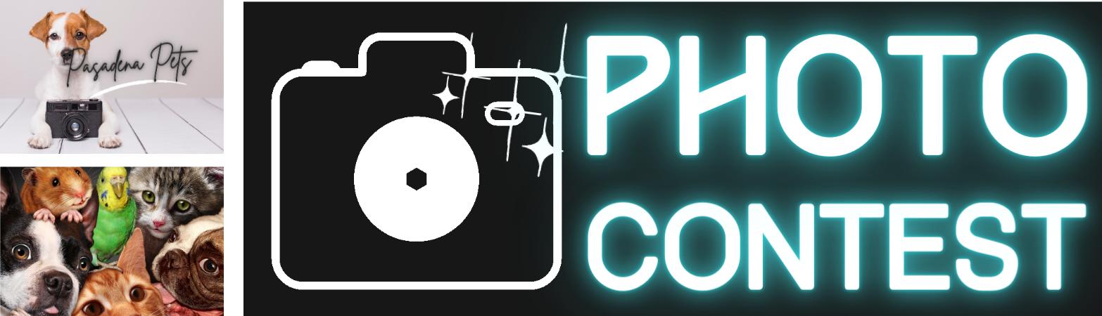 Photo Contest Deadline October 31 - Pasadena Pets